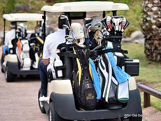 golf buggies at the Torneo Jardin Tropical