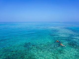 advice for snorkeling at Abama Beach