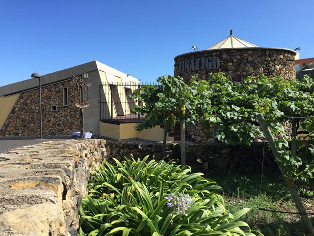 D.O. Ycoden-Daute-Isora, Extraordinary Wines Near our Luxury Properties in Tenerife
